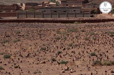 cementerio marroquie